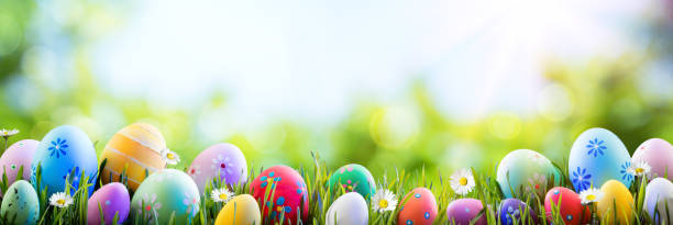 easter - colorful decorated eggs on field - easter imagens e fotografias de stock