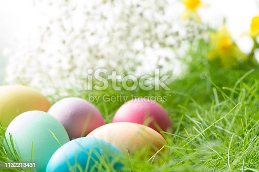 istock Easter colorful eggs on spring meadow in sunlight floral abstract white green  background 1132213431