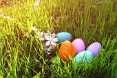 easter colorful eggs on the green grass.