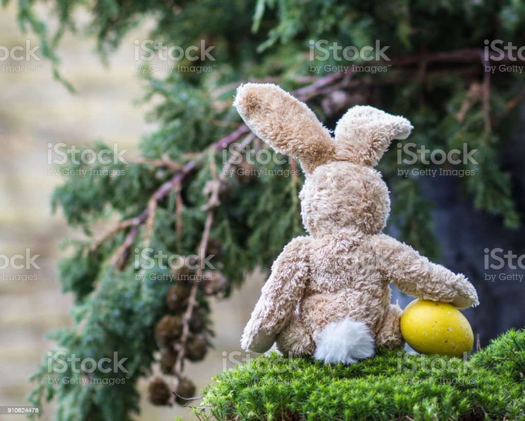 Easter concept. Lonely teddy rabbit with a yellow egg sitting back. stock photo