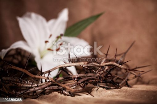 istock Easter Crown of Thorns 1205396068