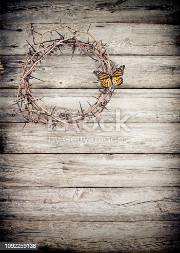 Easter Crown of Thorns and a Blue Morpho Butterfly Concept
