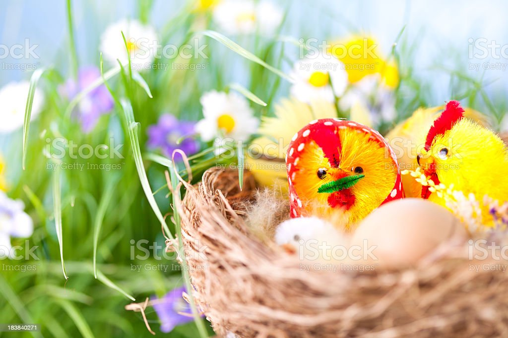 Easter decoration in the green grass and spring flowers royalty-free stock photo