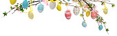 Branches with multi colored Easter eggs on white background