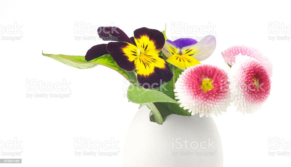 easter decoration w. egg and flowers royalty-free stock photo