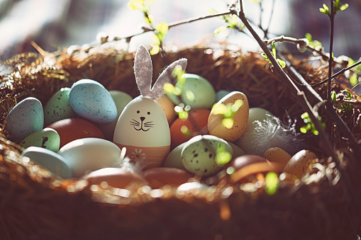 Easter decoration with crafted Easter bunny in the sunny nest