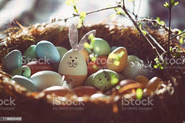Easter decoration with crafted easter bunny in the sunny nest picture id1136835405?b=1&k=6&m=1136835405&s=612x612&h=ylq7ajht0ymj1xoc4kog60ewcboesmqns8ancd3jcie=
