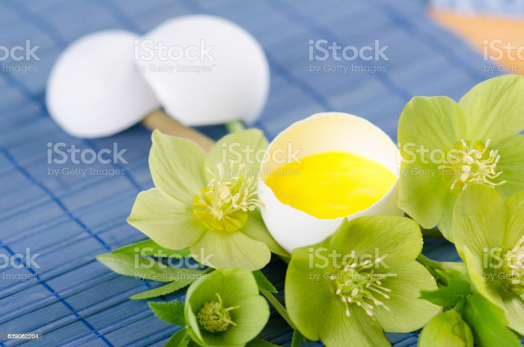 Easter decoration with egg shell helebore flower and pollen stock photo