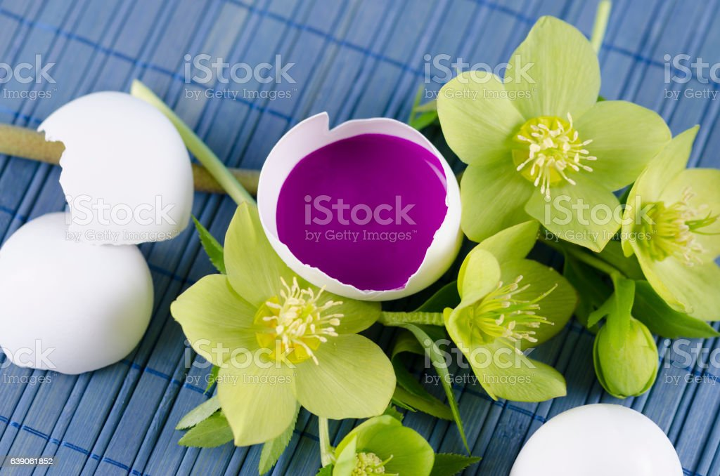 Easter decoration with egg shell with magenta tempera paint in stock photo