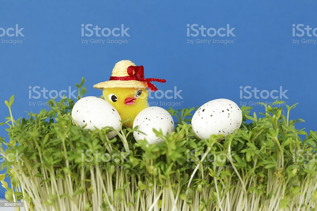 Easter detail stock photo