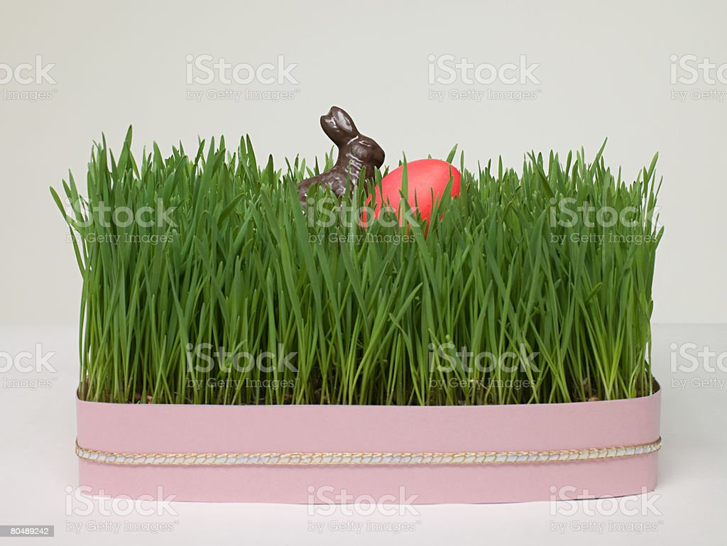 Easter egg and easter bunny in grass royalty-free stock photo