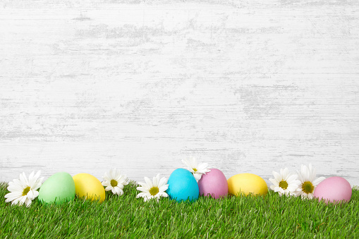 Easter eggs on green grass with wooden wall background.