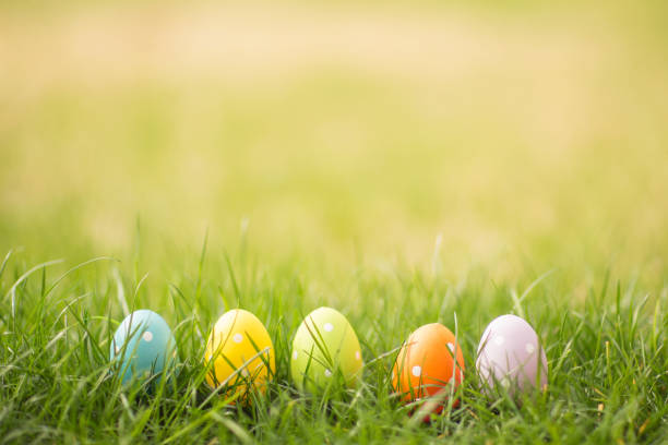 easter egg background with copy space. - easter imagens e fotografias de stock