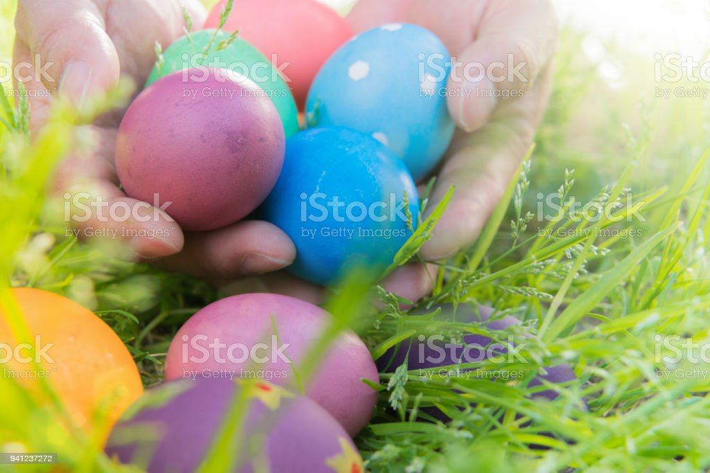 Easter egg ! happy colorful Easter sunday hunt holiday decorations...