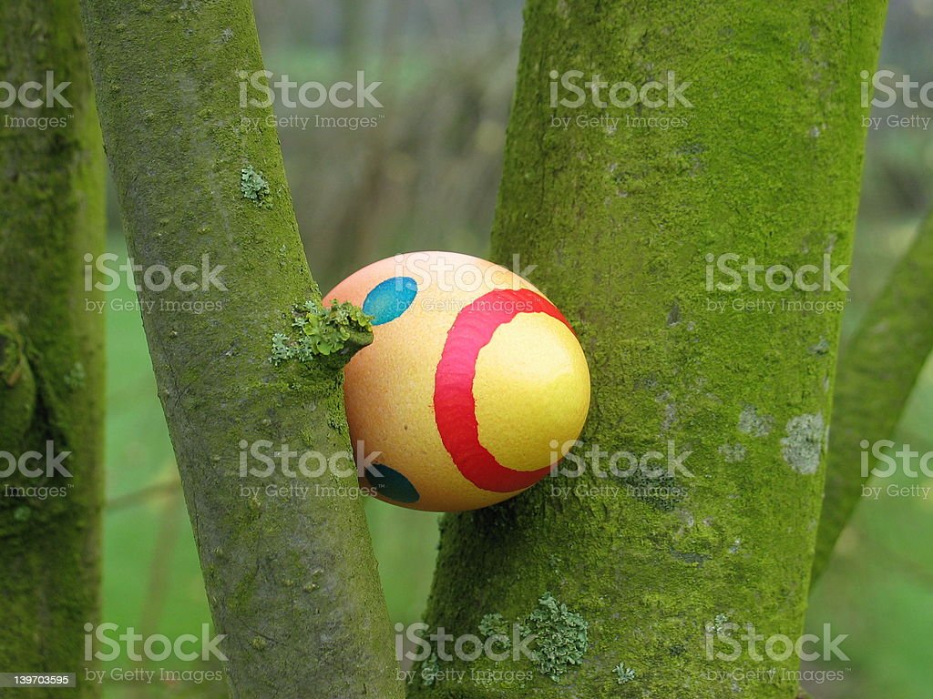 Easter egg hidden in a tree royalty-free stock photo