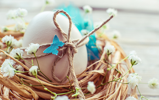 Easter egg in nest on rustic white background text space. Easter holiday background, card.