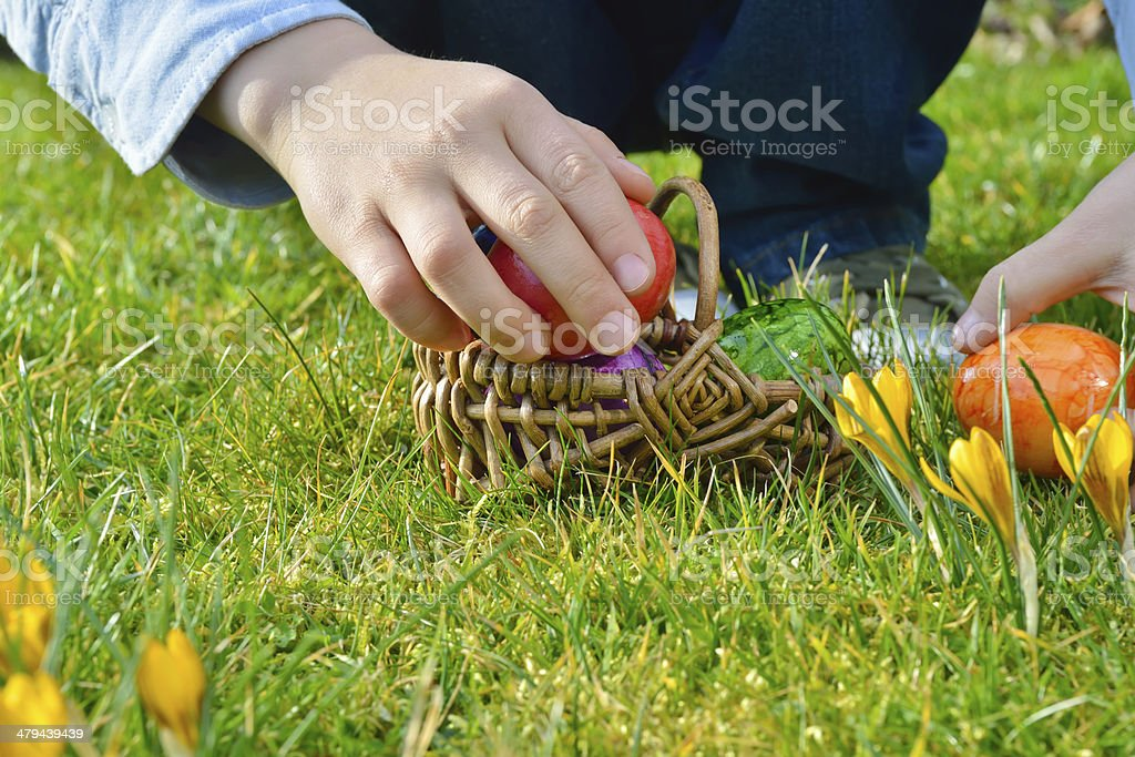 Easter egg hunt on a sunny Easter morning stock photo