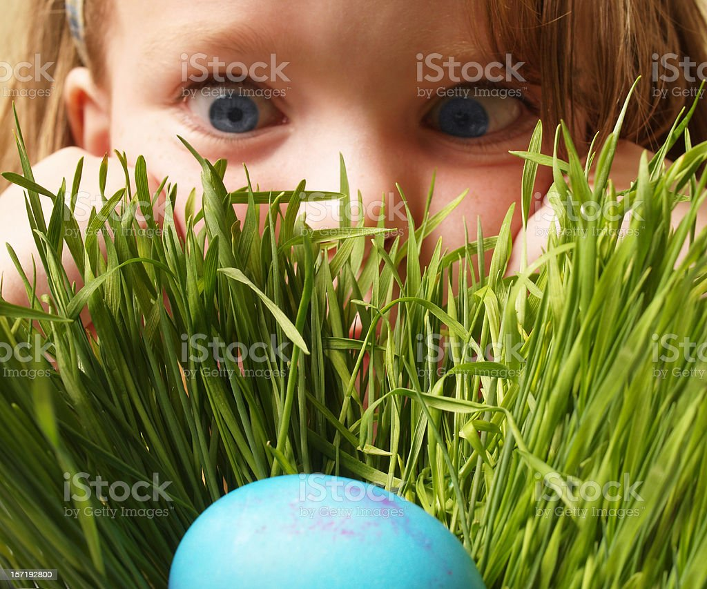 Little girl finds a colored easter egg in the tall grass; close up of...