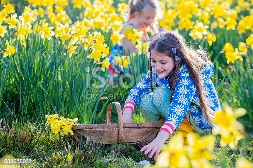 istock Easter Egg Hunting 638656032