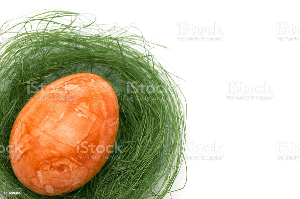 Easter Egg in a Nest royalty-free stock photo