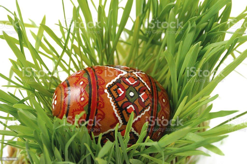 Oeuf de Pâques dans l'herbe photo libre de droits
