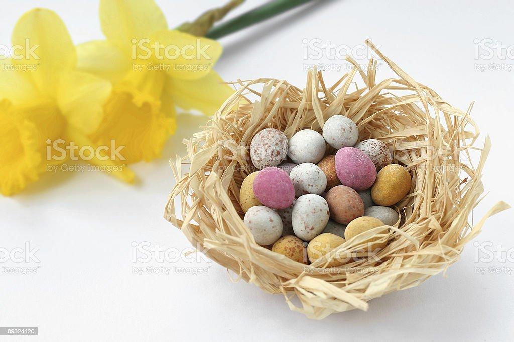 Easter Egg Nest (landscape) royalty-free stock photo