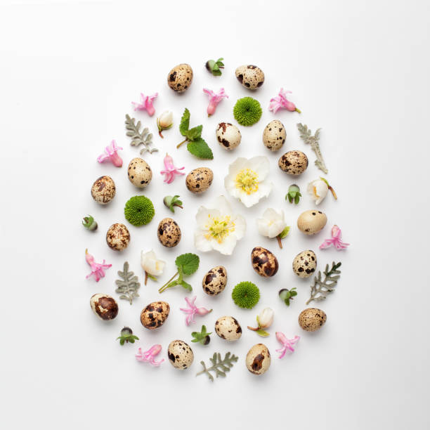 Easter egg shape made of quail eggs, colorful flowers and leaves. stock photo