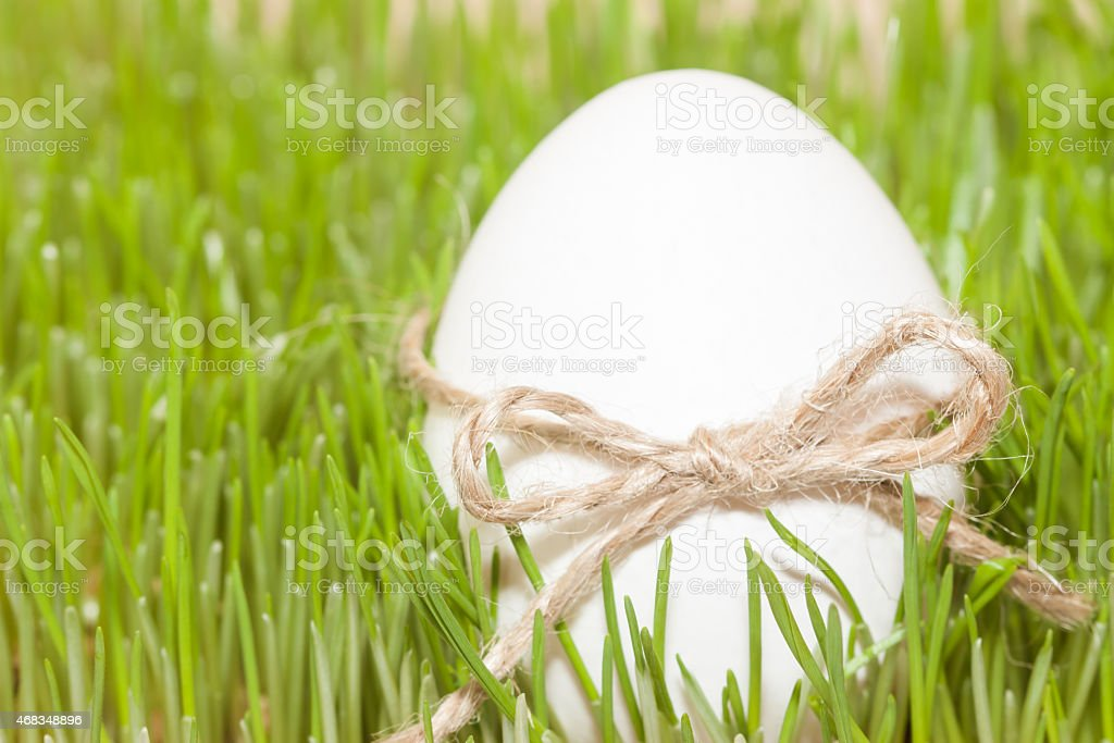 easter egg with bowknot in grass royalty-free stock photo