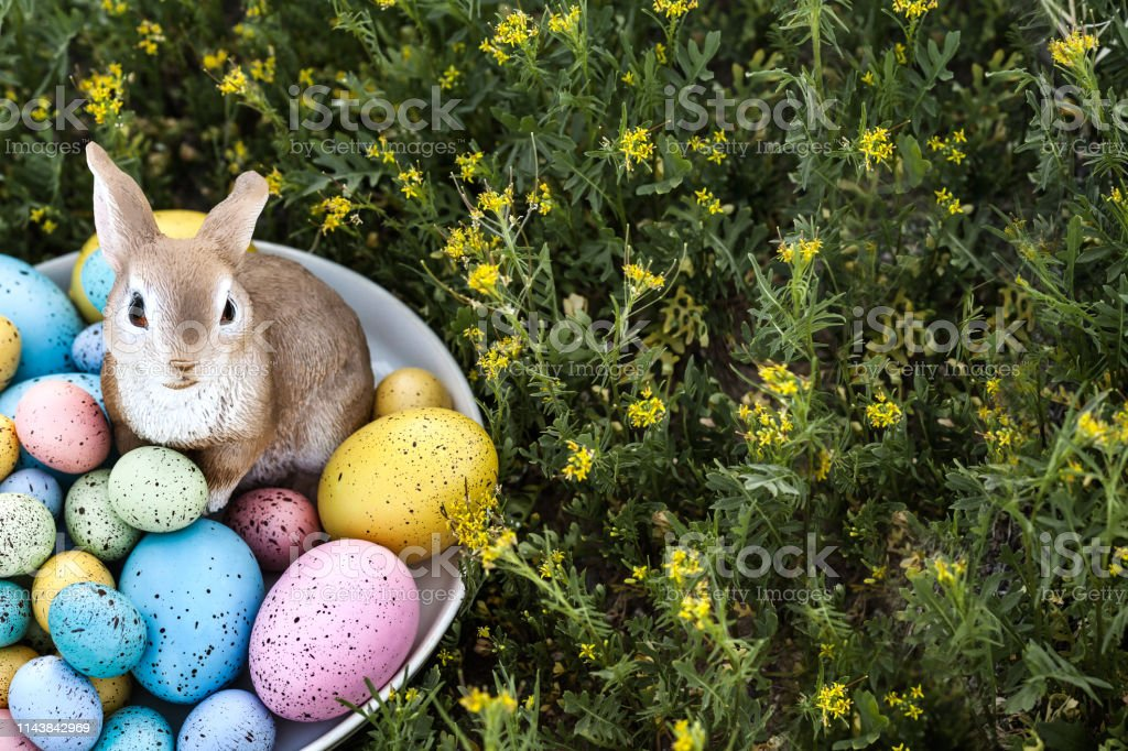 Easter eggs and bunny outdoor with green grass as a background and copy space on the right stock photo