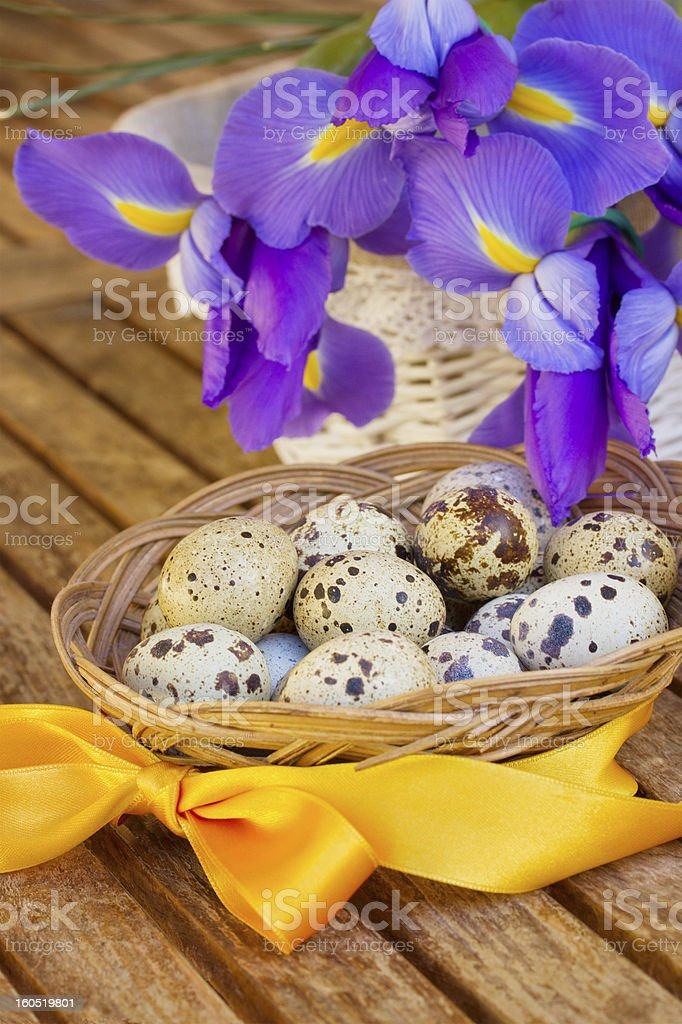 easter eggs and irises royalty-free stock photo