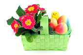 Easter Eggs and Primula flower on white isolated background