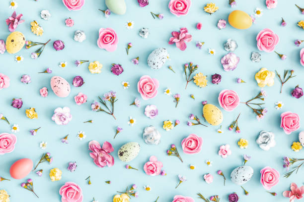 Easter eggs, colorful flowers on pastel blue background. Easter, spring concept. Flat lay, top view Easter eggs, colorful flowers on pastel blue background. Easter, spring concept. Flat lay, top view April stock pictures, royalty-free photos & images