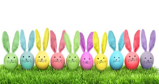easter eggs funny bunny green grass - buona pasqua in tedesco foto e immagini stock