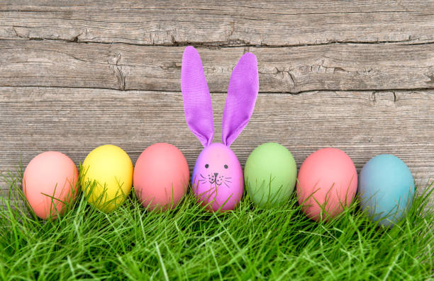 easter eggs funny bunny holidays decoration - easter bunny stock photos and pictures