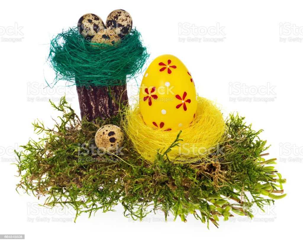 Easter eggs hand painted multicolored in bird nest, forest moss, stump royalty-free stock photo