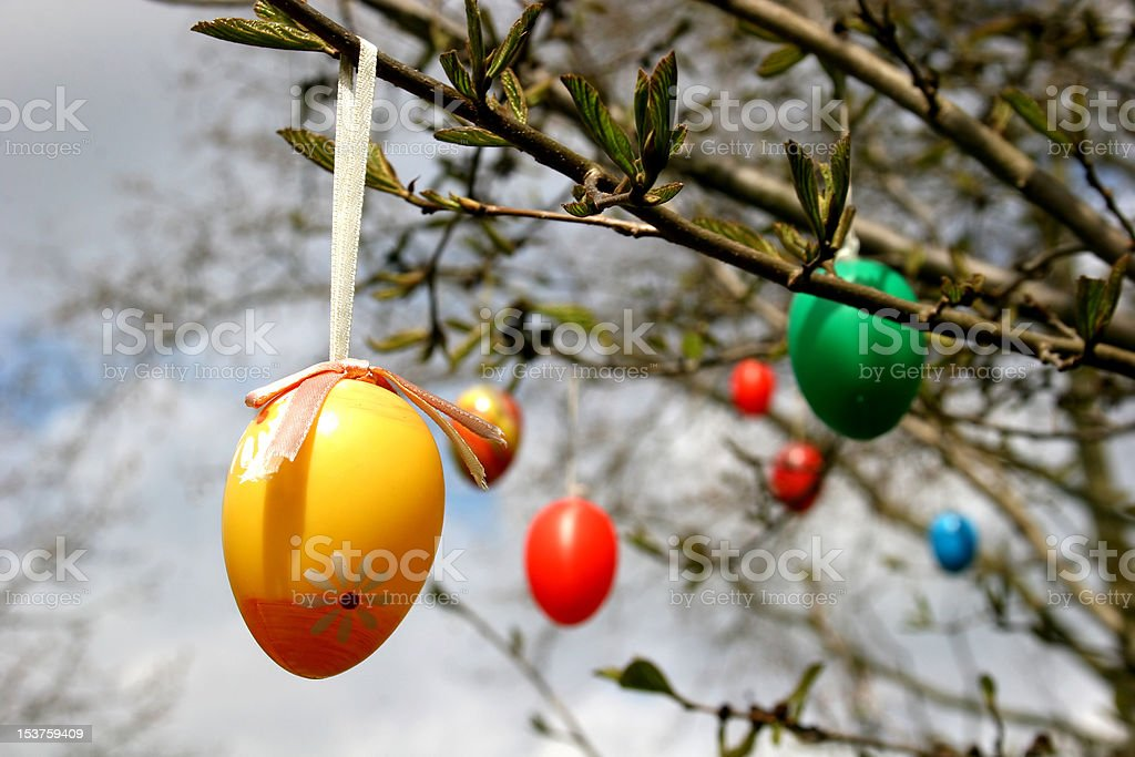 Easter eggs hanging royalty-free stock photo