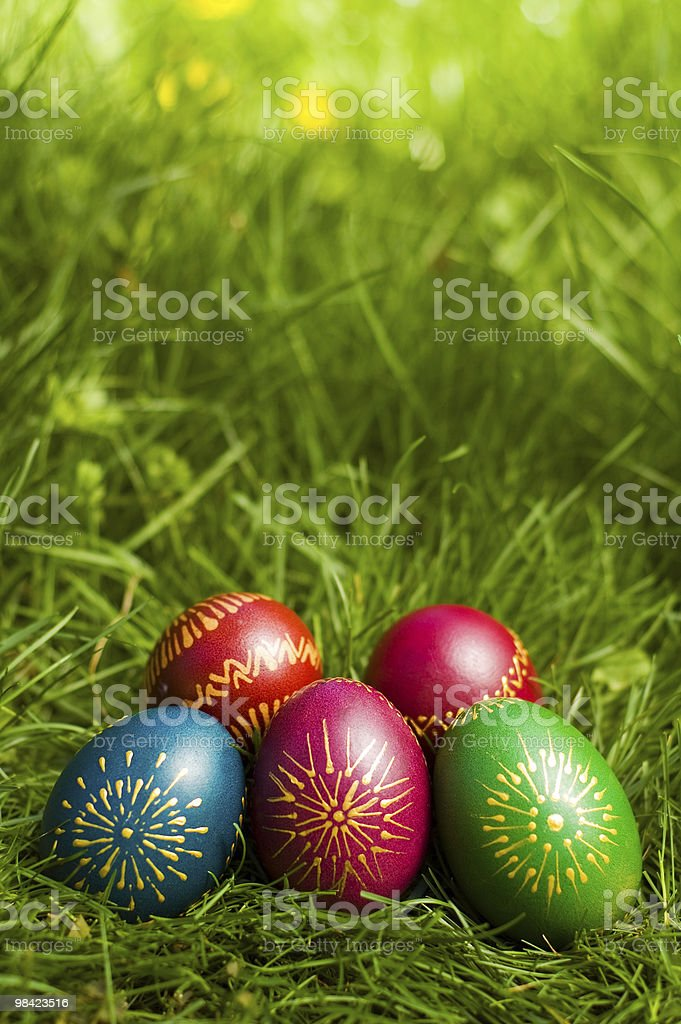 Easter eggs hunt royalty-free stock photo