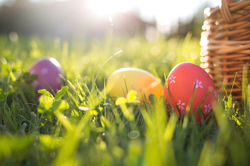 Easter eggs in a basket on the grass on a Sunny spring day close-up.