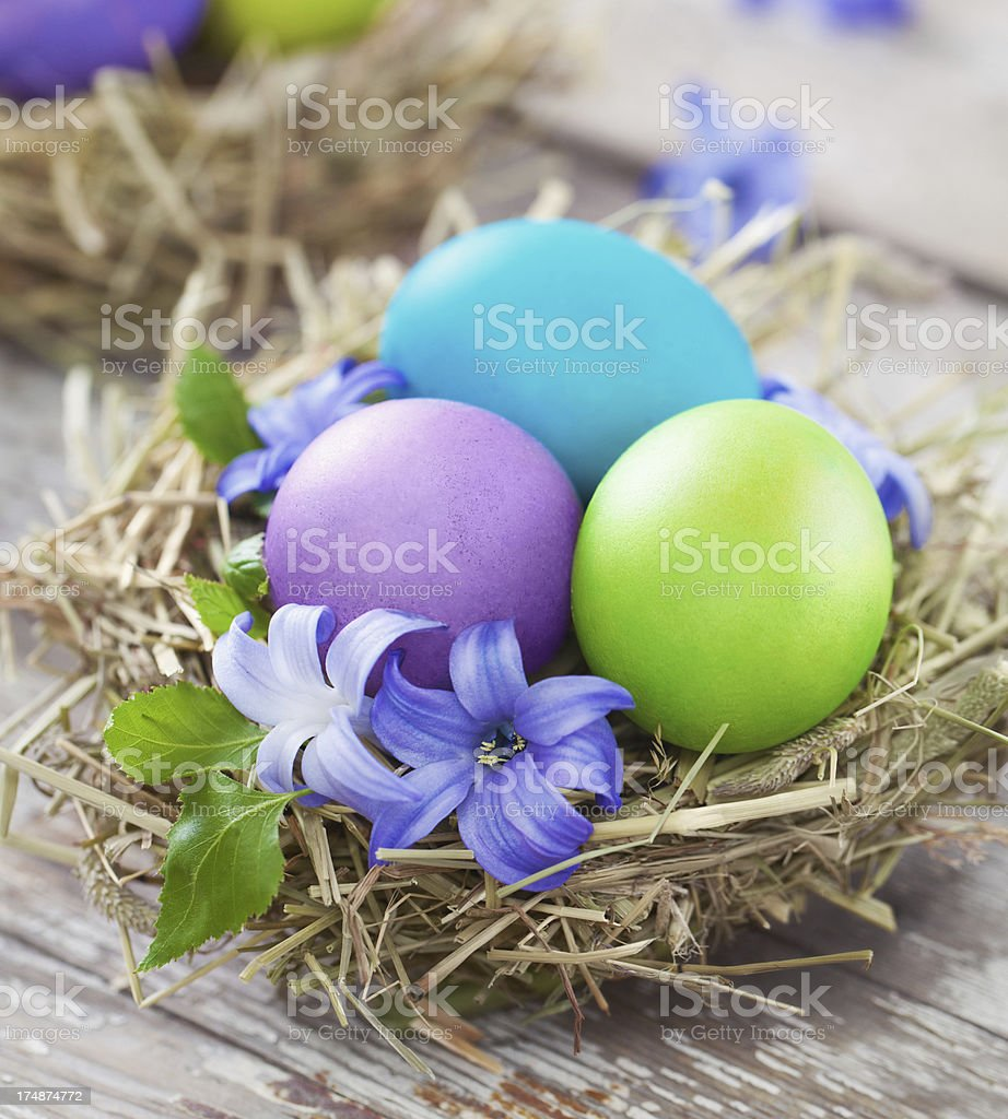 Easter eggs in a bird's nest - Royalty-free Animal Egg Stock Photo