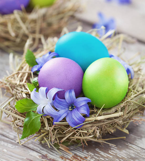 Easter eggs in a bird's nest stock photo