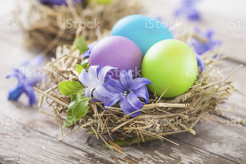 Easter eggs in a bird's nest royalty-free stock photo