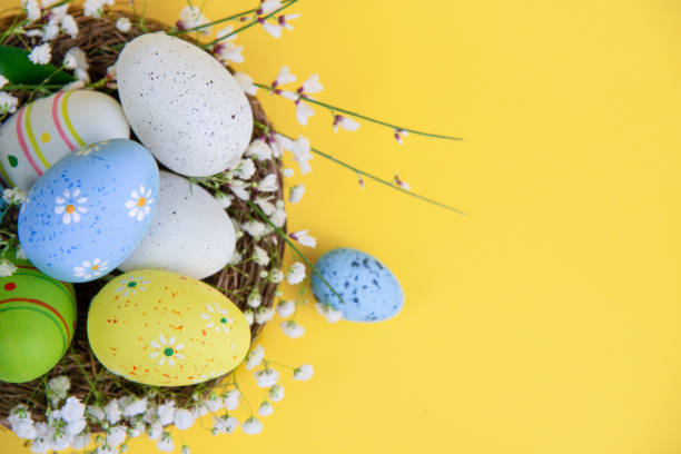 Easter Eggs in a Nest on Yellow Background stock photo