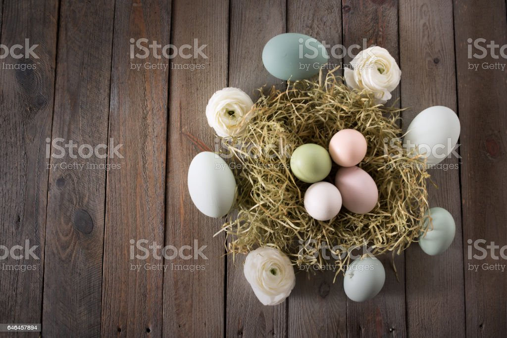Easter eggs in a nest stock photo