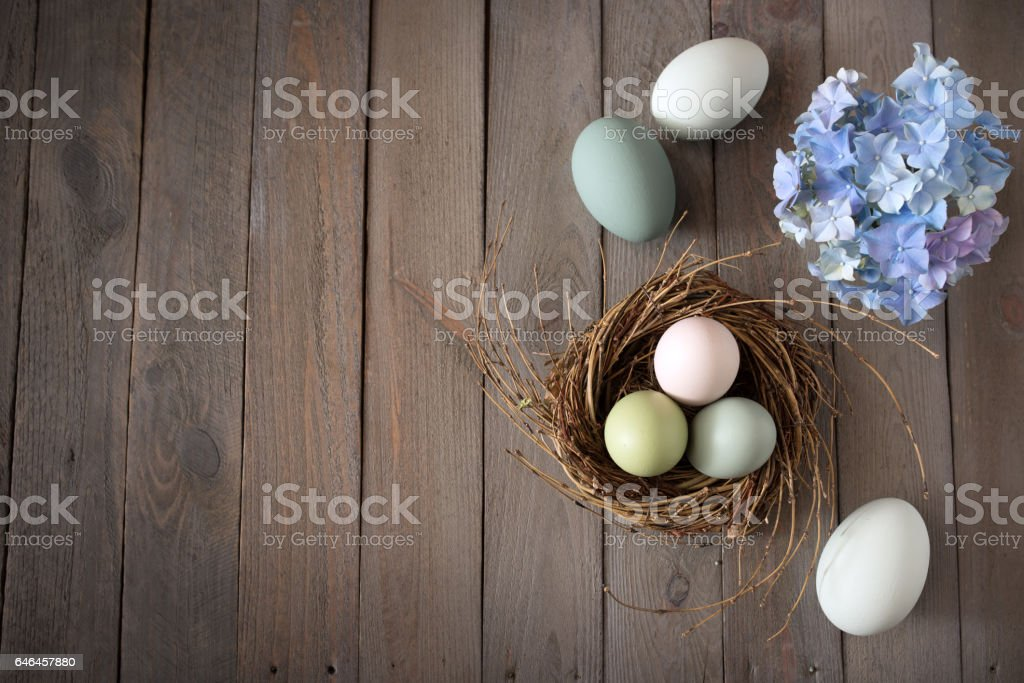 Easter eggs in a nest with blue hydrangeas stock photo