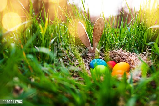 istock Easter eggs in a spring meadow 1139511790