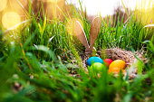 Colorful easter eggs in a spring meadow with sunny bokeh