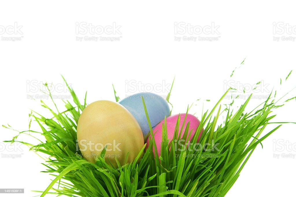 Easter eggs in fresh green grass royalty-free stock photo