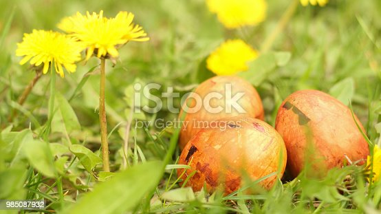 istock Easter Eggs in Grass 985087932