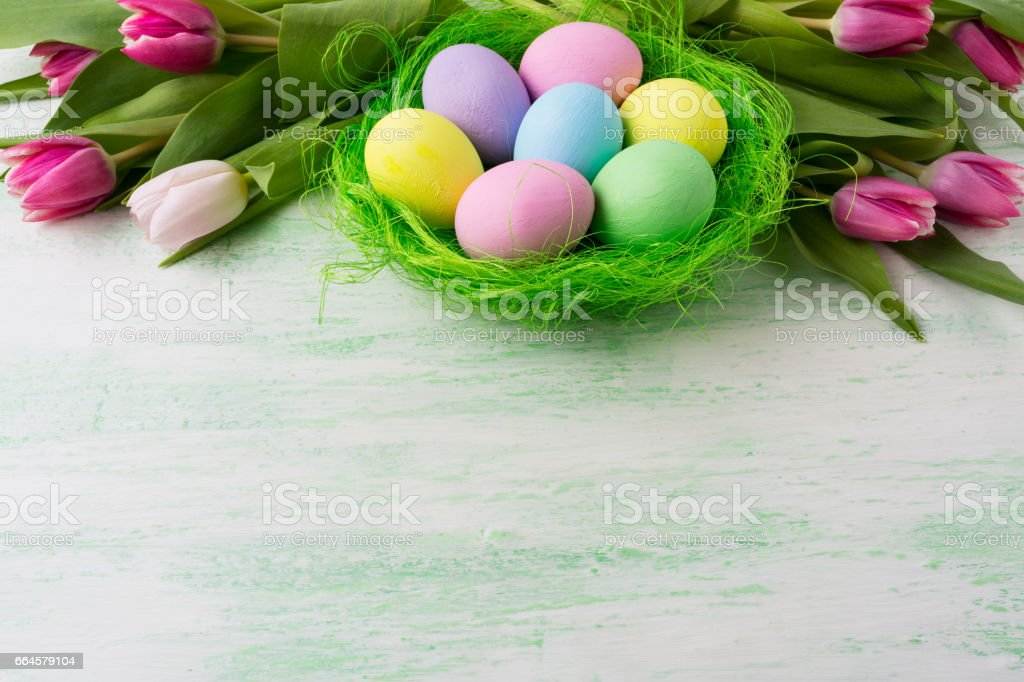 Easter eggs in green nest background royalty-free stock photo