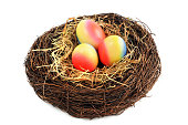Easter eggs in nest. isolated background.